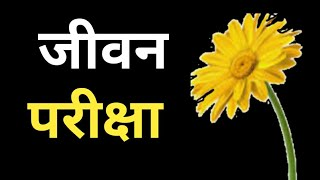 Best motivational thoughts in hindi  ।। अनमोल वचन ।। Anmol vachan  ।।