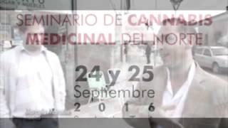 Video: Cannabis en Salta