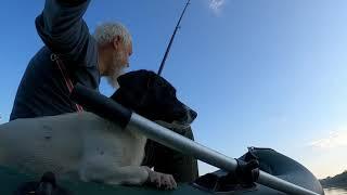 Выбрался на пару часов на рыбалку под свой берег