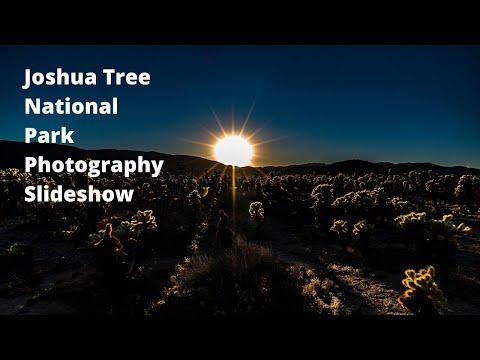 joshua-tree-national-park-photography-slideshow.