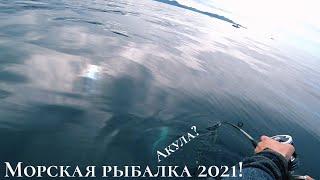 МОРСКАЯ РЫБАЛКА Ловля камбалы с лодки Май 2021