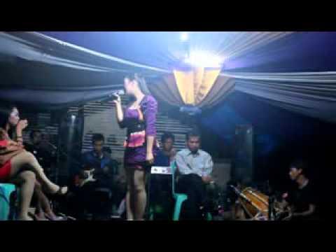 Nico entertainment Amerika