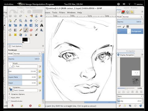 Huion 580 Graphics Tablet Working With Linux And The Gimp