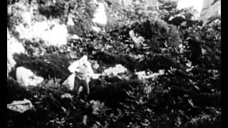 Rory O'More (1911)