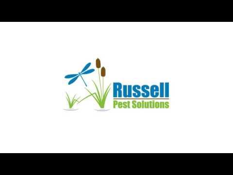 Pest Control Jacksonville Beach FL - Russell Pest Solutions - Jacksonville FL