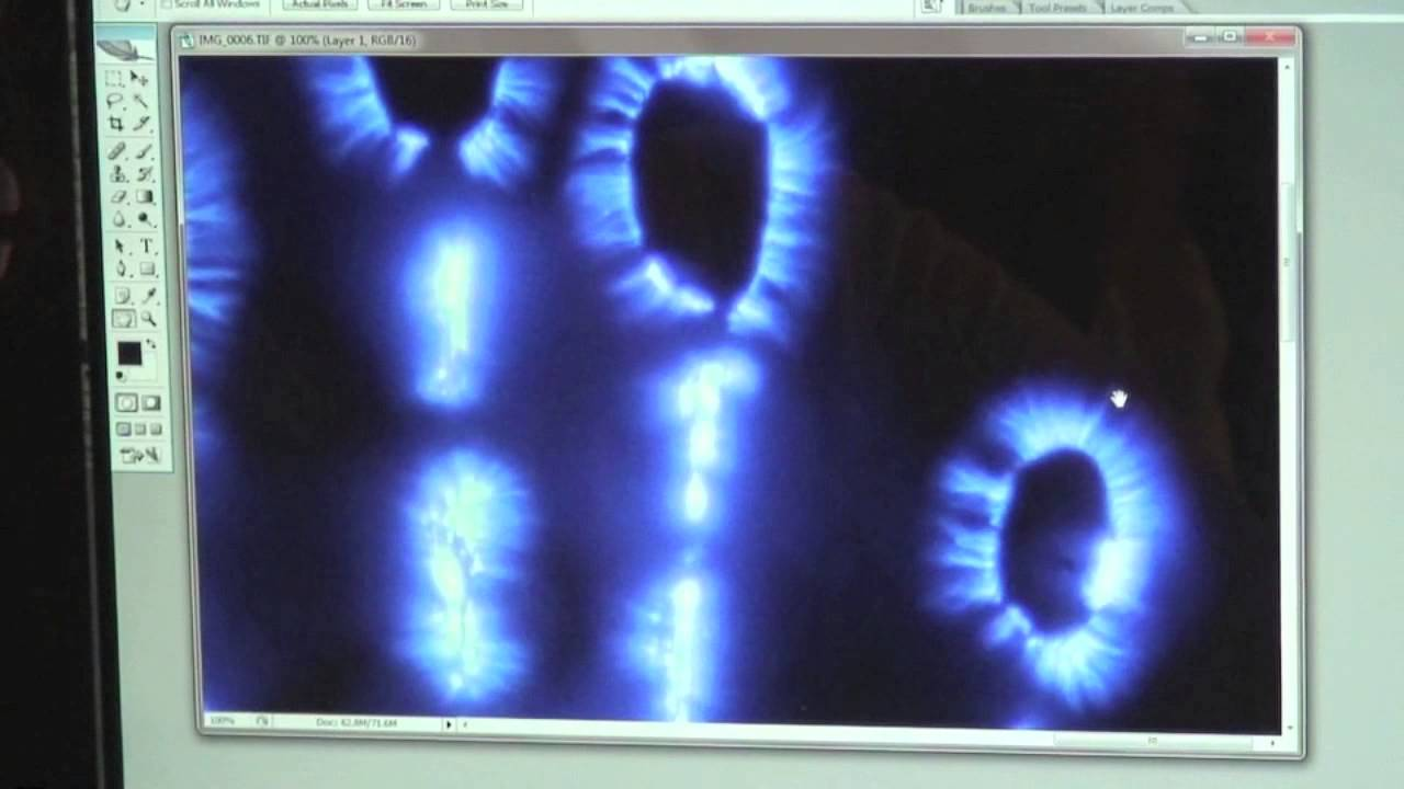 Kirlian Photography Into The World Of