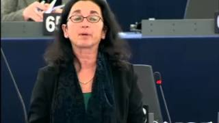 Angelika WERTHMANN 11 Dec 2013 plenary speech on Relations between the European Parliament an