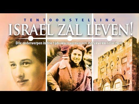 Israël Zal Leven, Zomertentoonstelling 2009, INTERVIEUW GIL ILUTOWICH