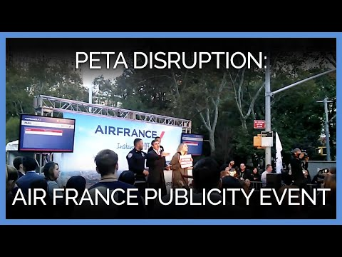 PETA Supporters Disrupt Air France Publicity Event to Protest Cruelty to Primates