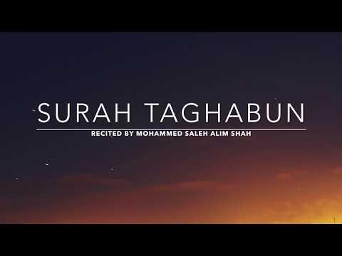 Surah Taghabun - سورة التغابن | Mohammed Saleh Alim Shah | English Translation