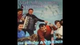 Slavko Avsenik & seine Original Oberkrainer Auf Silbernen Spuren
