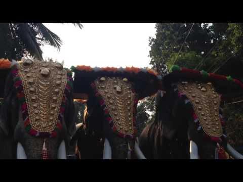 thrikkadavoor sivaraju karnnan and anandan @ ayyankoikal chavara