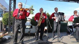 Zespół Klawa Ferajna w cyklu Kulturalnie przy fontannie