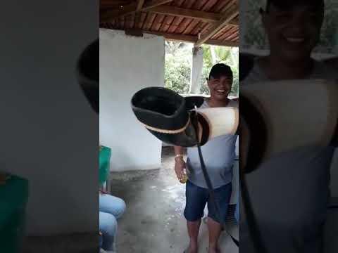 Grande amigo Zé de Tito vaqueiro dos vaqueiros