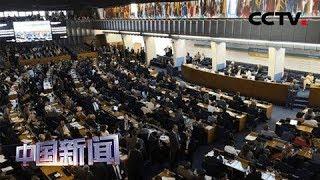 [中国新闻] 新闻链接:联合国粮食及农业组织 | CCTV中文国际