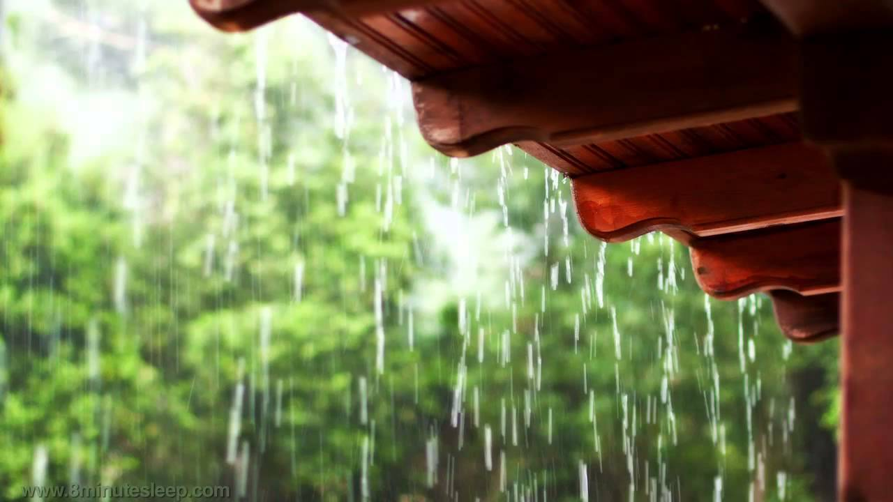 Wallpaper Falling Off Ceiling Rain On A Tin Roof Relax Meditate Sleep 10 Hours Rain