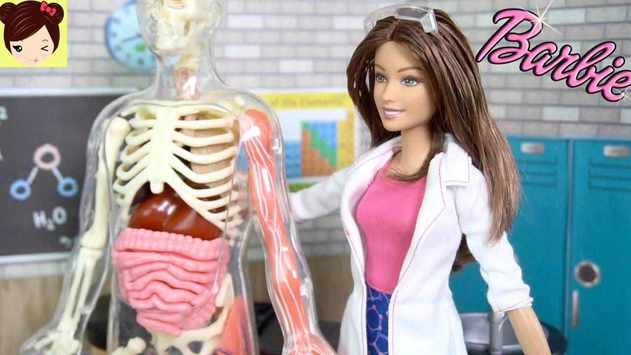 Barbie Le Enseña a Clase de Chelsea Sobre el Cuerpo Humano - Video ...
