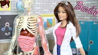 Barbie Le Enseña a Clase de Chelsea Sobre el Cuerpo Humano - Video Educativo Divertido para niños thumbnail