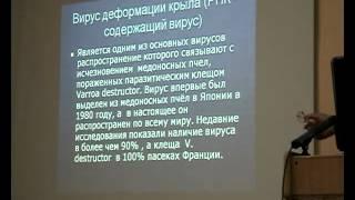 Лекция Ноздрина Г.А. 21.04.12 на собрании-семинаре ОПНСО