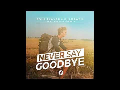 Soul Player & Gui Brazil - Never Say Goodbye (Original mix) ft. Vanessa Correia mp3