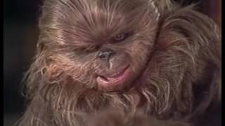 The Star Wars Holiday Special (High Quality)