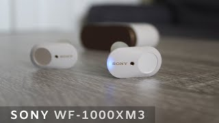 SONY WF-1000XM3 Wireless Earphones - HONEST Review