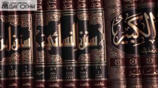 Уроки по шафи`итскому фикху (мусульманское право) Джамат намаз
