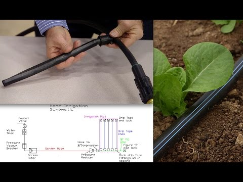 How to install home garden drip irrigation