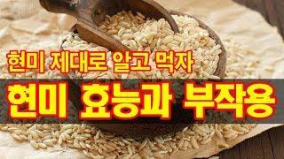 현미 제대로 알고 먹자! 현미 효능과 부작용(68회)