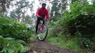 Apollo Radar Men's Mountain Bike