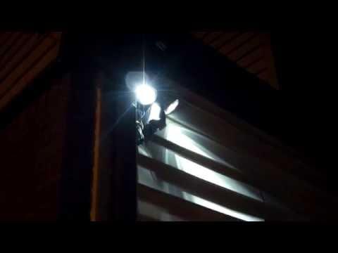 All my off grid backyard solar lights