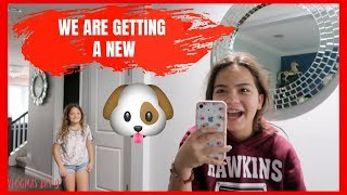 WE ARE GETTING A NEW PUPPY | VLOGMAS DAY 9