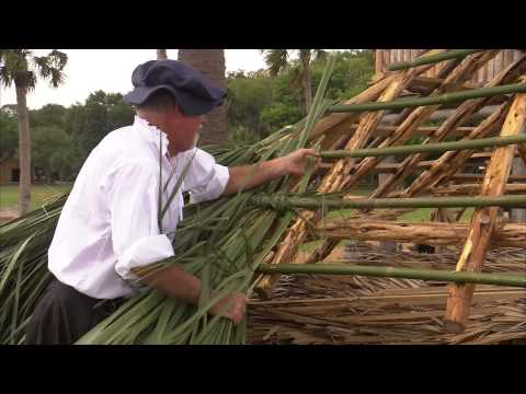Thatching - First Colony: Our Spanish Origins
