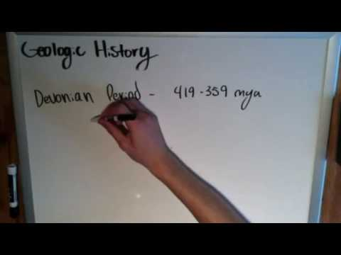 Precambrian and Paleozoic Events - Geologic Time