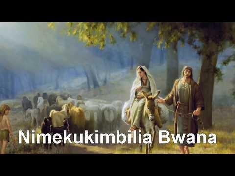 Nimekukimbilia Bwana
