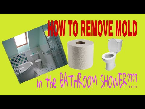 how-to-removed-mold-or-mould-from-the-silicone-in-the-bathroom-shower-or-toilet