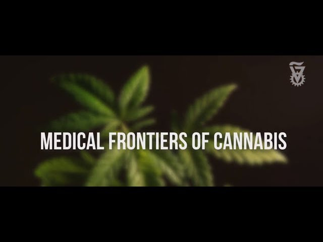 Prof. Dedi Meiri Medical Frontiers of Cannabis Technion
