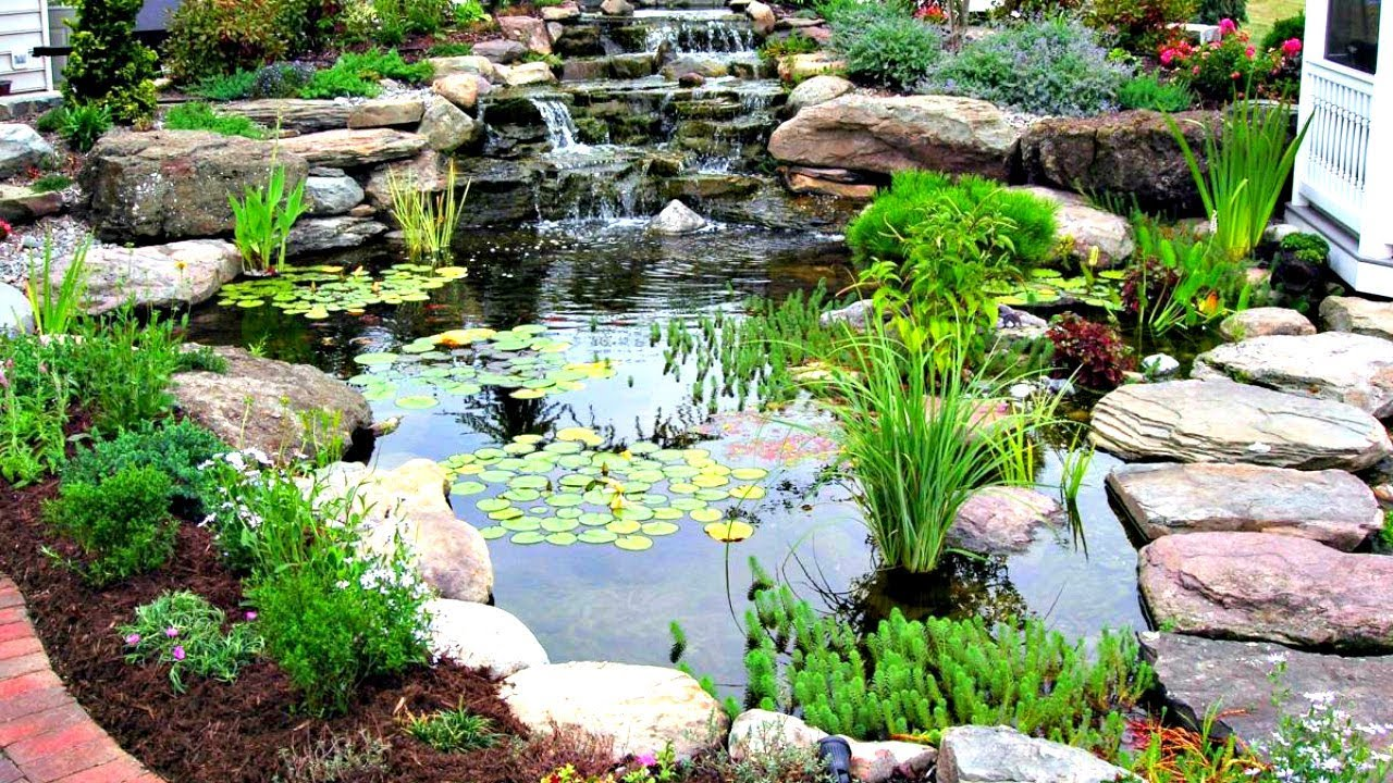 Building a backyard pond youtube for Small pond house plans