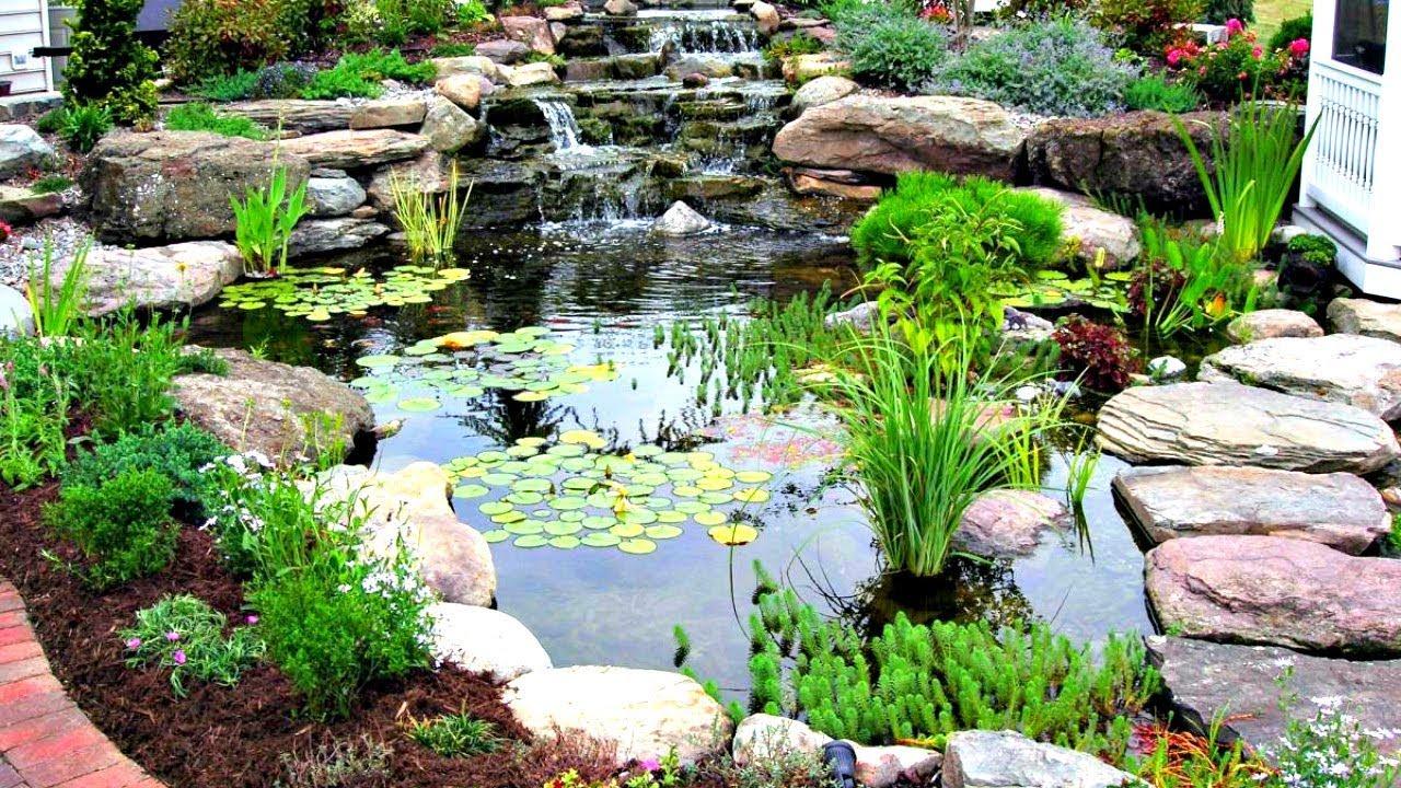 Building a Backyard Pond! - YouTube on Yard Ponds Ideas id=41060