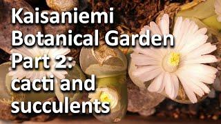 Kaisaniemi Botanical Garden - Part 2: Cacti, succulents, water lilies, streptocarpus...