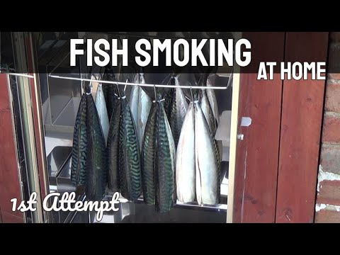 Fish Smoking - Mackerel