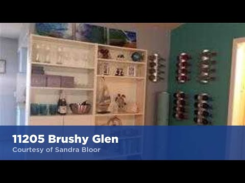 11205 Brushy Glen Austin, TX 78754 | Sandra Bloor | Top Real Estate Agent