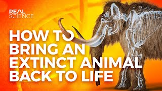 How to Bring an Extinct Animal Back to Life