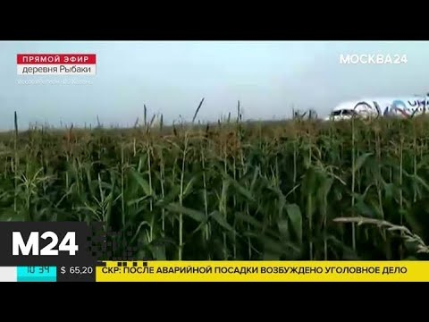 Заслуженный пилот России Юрий Сытник прокомментировал инцидент с Airbus А321 - Москва 24