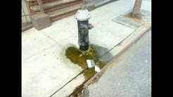 Leaky Fire Hydrants Can Cause Property Damage – Building Inspections