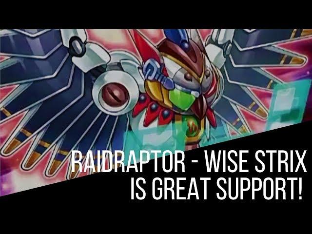 Raidraptor - Wise Strix is Powerhouse Support!