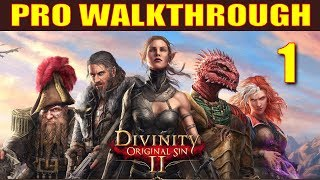 Divinity: Original Sin 2 Walkthrough Part 1 - 5 Things They Don't Tell You in Character Creation