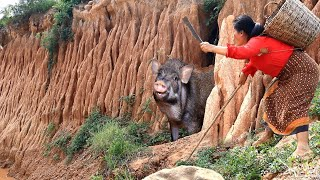 cooking in forest- woman grilled pig for dog- puppy eating delicious HD