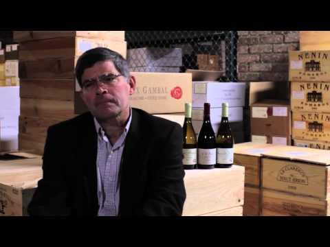 How do you buy a vineyard in Burgundy?
