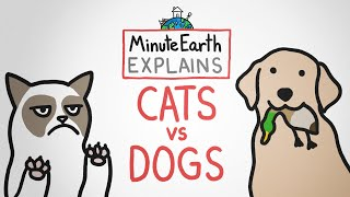 MinuteEarth Explains: Cats vs Dogs